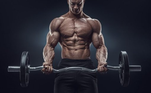 D-Bal Max vs D-Bal – Dianabol Steroid Alternative, Which Is the Best?