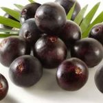 Acai Berry Good For Weight Loss?